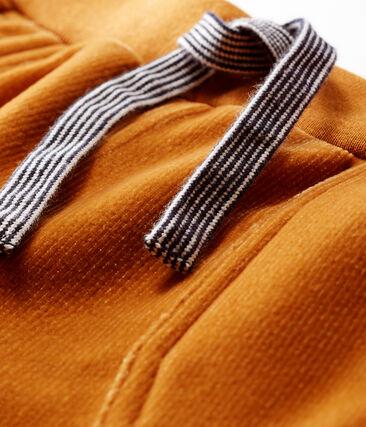 Pantalone bebè maschio in maglia di velluto a costine marrone Cuivre
