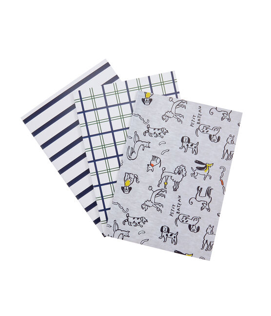 Confezione da tre carnet grigio Poussiere / bianco Multico